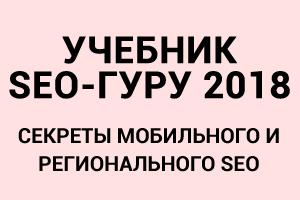 seoguru300
