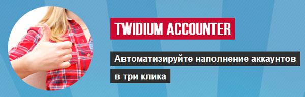 Программа Twidium Accounter